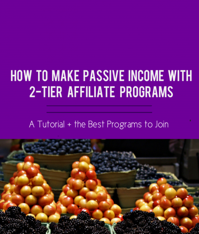 2-tier affiliate program blog post image, affiliate programs blog post, fruit stacks,