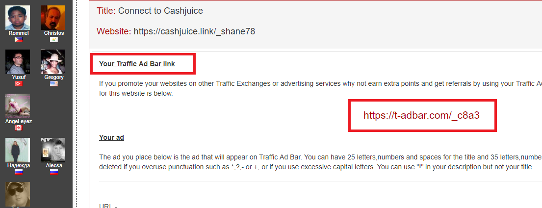 traffic ad bar, traffic ad bar setup, traffic ad bar websites, trafficadbar