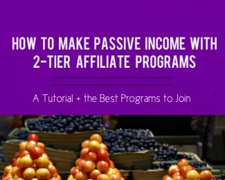 2-tier affiliate program blog post image, affiliate programs blog post, fruit stacks,